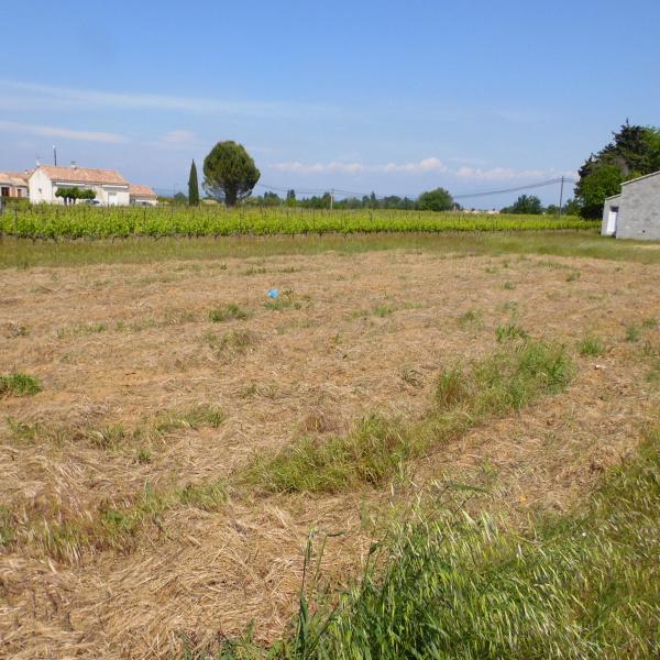 Offres de vente Terrain Saint-Victor-la-Coste 30290